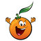 Stock Image : Happy orange
