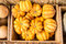 Stock Image : Harvest Bounty