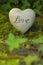 Stock Image : Heart on moss