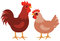Stock Image : Hen and rooster
