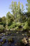 Stock Image : Hermon stream landscape, Israel.