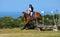 Stock Image :  Het de dwarsruiter en paard van het land