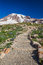 Stock Image : Hiking Trail to Mount Rainier