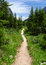 Stock Image : Hiking trail in the wilderness