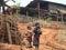 Stock Image : Hilltribe Kids. Myanmar (Burma)