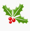 Stock Image : Holly berry Christmas symbol