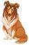 Stock Image :  Hond