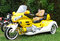 Stock Image : Honda Goldwing tricycle