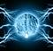 Stock Image : Human brain