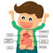 Stock Image : Human digestion system