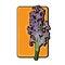 Stock Image : Hyacinth clip art yellow