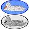 Stock Image : Duck