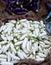 Stock Image : Indian vegetable- White Brinjal