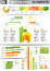 Stock Image : INFOGRAPHIC presentation template graph pie