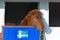 Stock Image : Islandic Horse