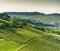 Stock Image : Italian vineyards in Langhe, Piedmont