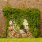 Stock Image : Ivy covered clock