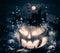 Stock Image : Jack o'Lantern on Halloween night