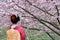 Stock Image : Japanese Geisha