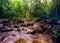 Stock Image : Kanching river