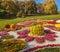 Stock Image : KIEV, UKRAINE - OCTOBER11: Chrysanthemumsr Show Landscape Park i