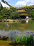 Stock Image : Kinkakuji temple