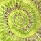 Stock Image : Kiwi infinity spiral abstract background.
