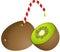 Stock Image : Kiwi with Straw