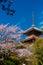 Stock Image : Kiyomizu Temple