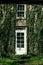 Stock Image : Klimop behandeld deur en venster