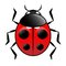 Stock Image : Ladybird