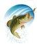 Stock Image : Largemouth bass catching a bite