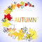 Stock Image : Letters autumn and maple leaves