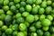 Stock Image : Limes