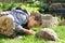 Stock Image : Little boy feeding his tortoise