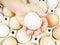 Stock Image : Little girls hand holding a chicken egg