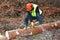 Stock Image : Lumberjack doing his work