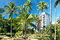 Stock Image : Luxury hotel on Hawaii with palms trees