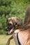 Stock Image :  Młoda kobieta trzyma psa