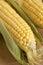 Stock Image : Maize