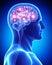 Stock Image : Male active brain