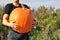 Stock Image : Man with big pumpkin