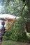 Stock Image : Man Cutting Tree Limbs