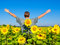 Stock Image : Man in the field of sunflowers