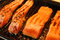 Stock Image : Marinated salmon fillets