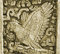 Stock Image :  Maya kunstvogel