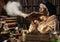 Stock Image : Medieval alchemist