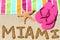 Stock Image : Miami, Florida beach travel background