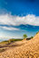 Stock Image : Michigan Sand Dunes