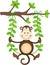 Stock Image : Monkey in a Swing